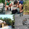 Bagolyvár Vadaspark Szolnokon fotók