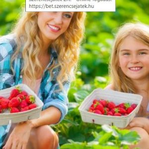 Bogyós gyümölcsök fotók