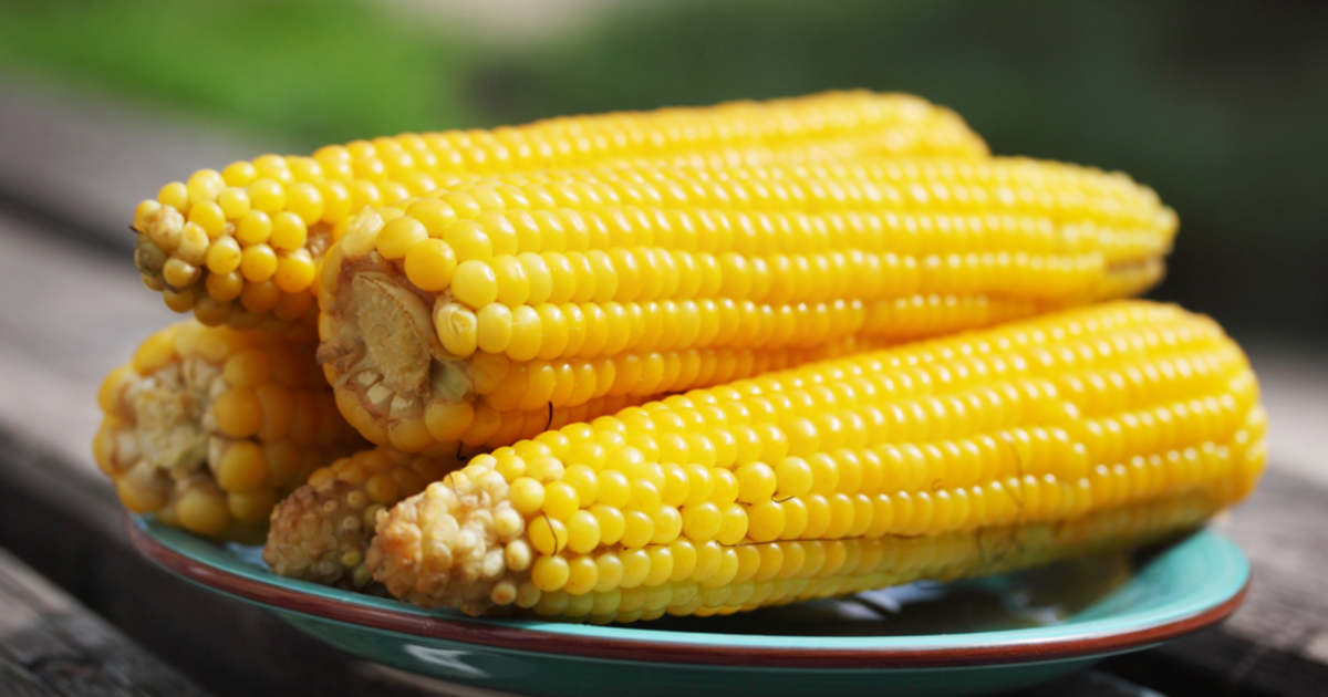 Kukorica fotók